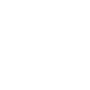 Energie in Movimento - Logo White