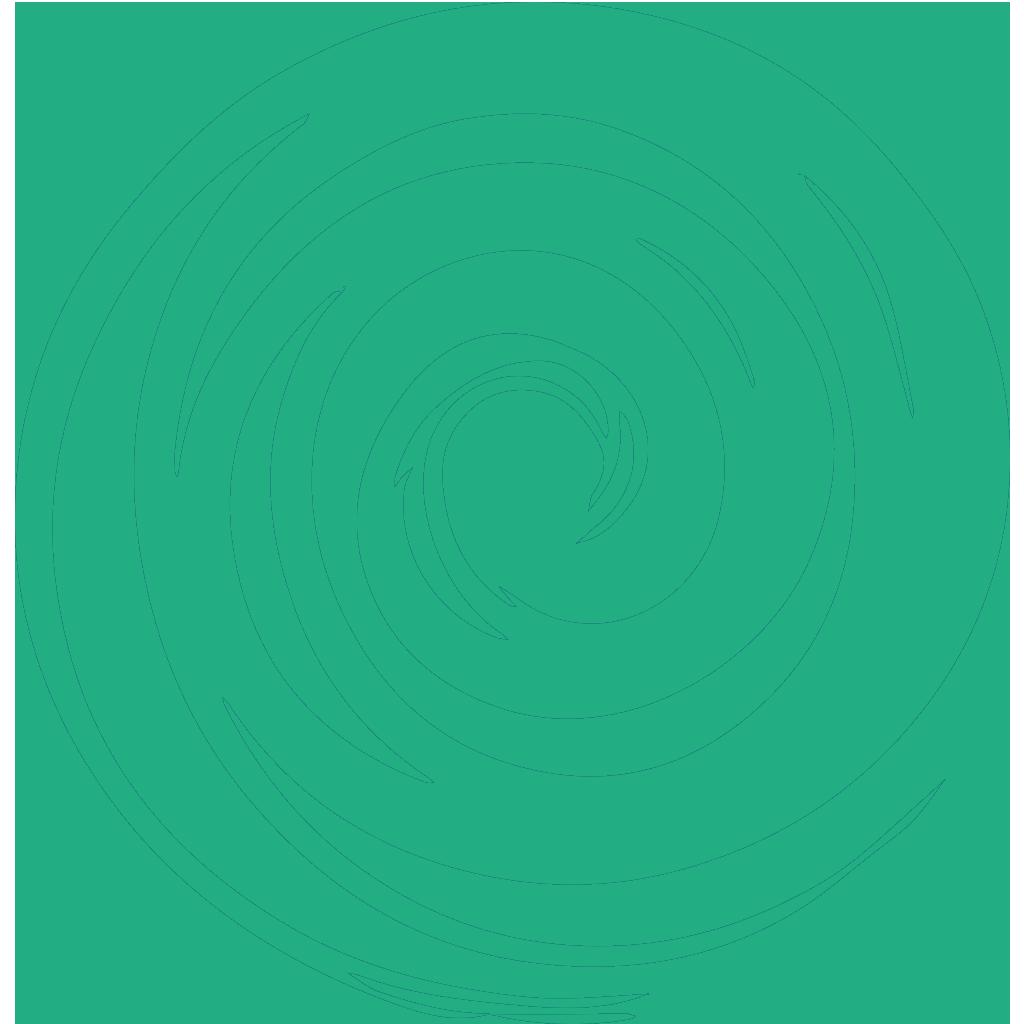 CxC 2 - La Linea del Tempo e l'Evoluzione - Spirale