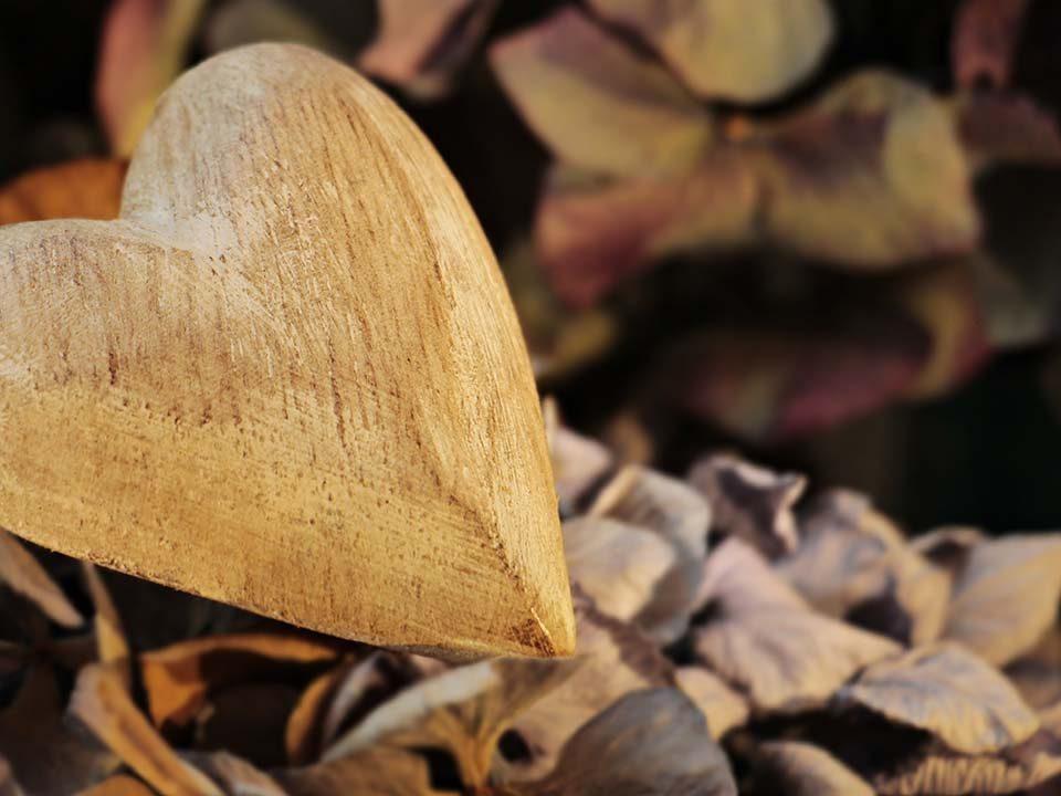 Il Valore del Dono, la gratitudine