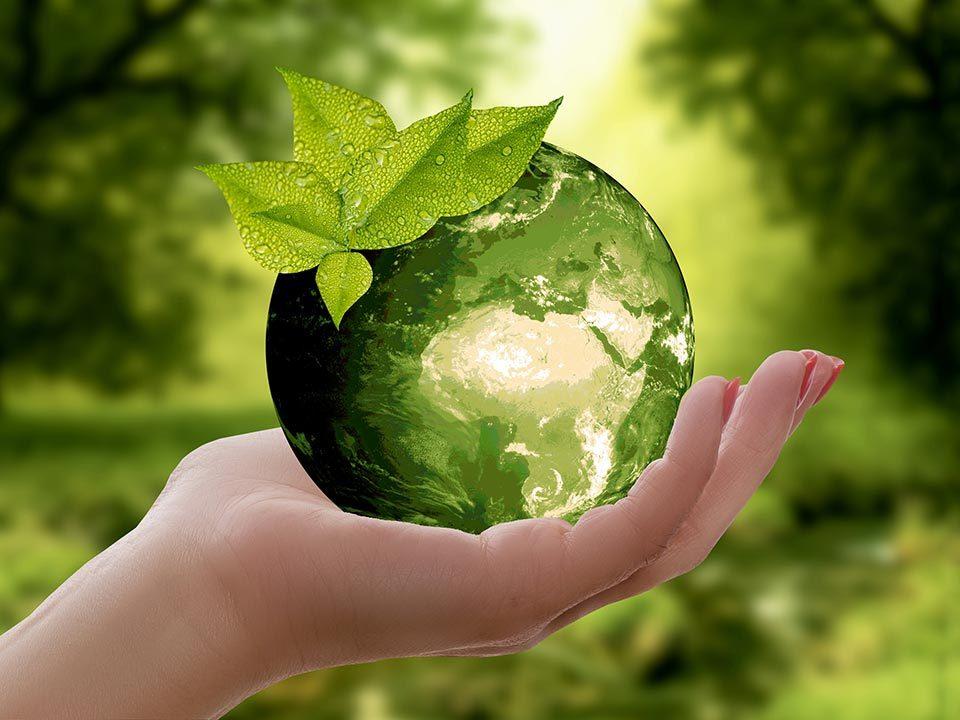 L' ecologia del dono - l'informazione di base della vita